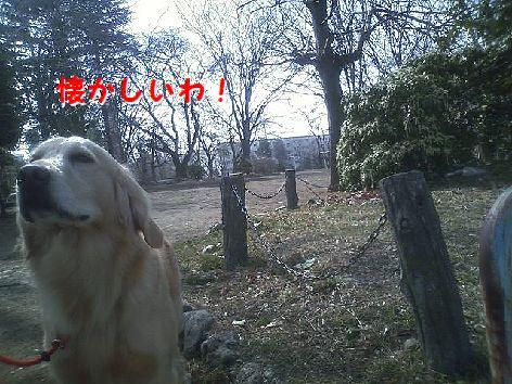 b_20130312075223.jpg
