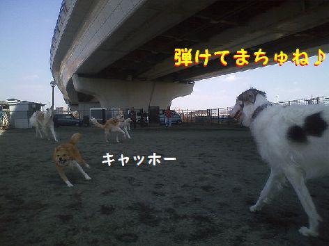 b_20130318074312.jpg