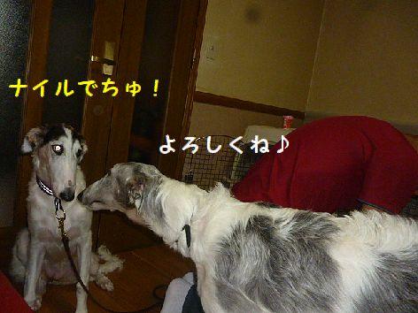 c_20120925074826.jpg