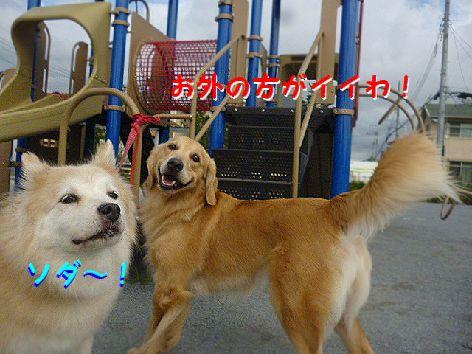 c_20120928074247.jpg
