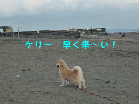 c_20121010073659.jpg