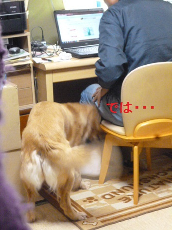 c_20121116074545.jpg