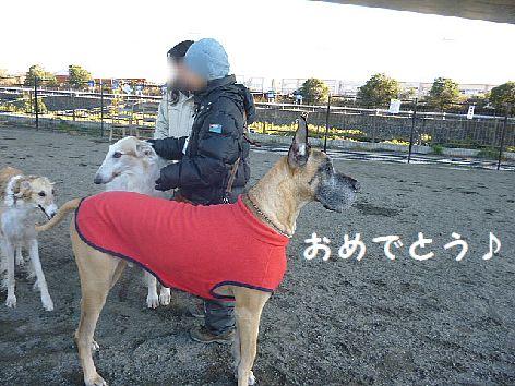 c_20130106102612.jpg