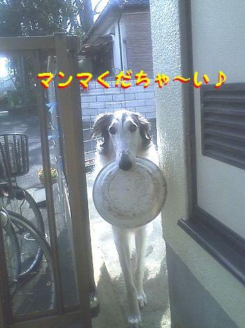 c_20130315075315.jpg