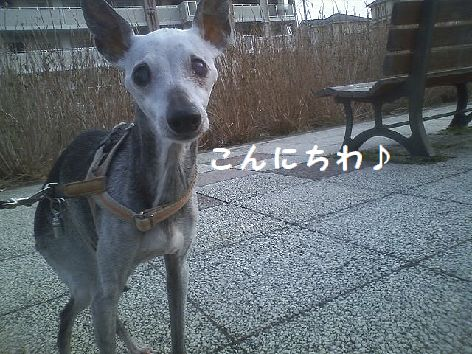 c_20130316103322.jpg