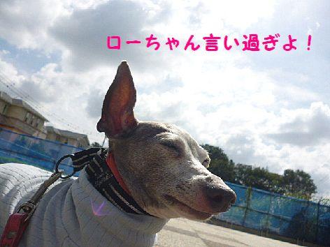 d_20121001072120.jpg