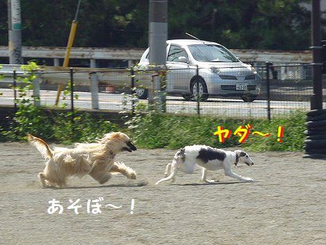 e_20120914081900.jpg