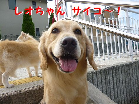 e_20120928074247.jpg