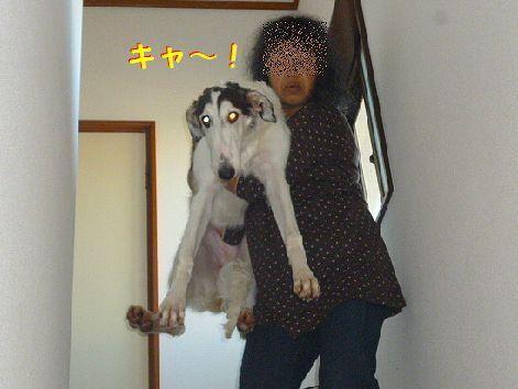 e_20121025074255.jpg