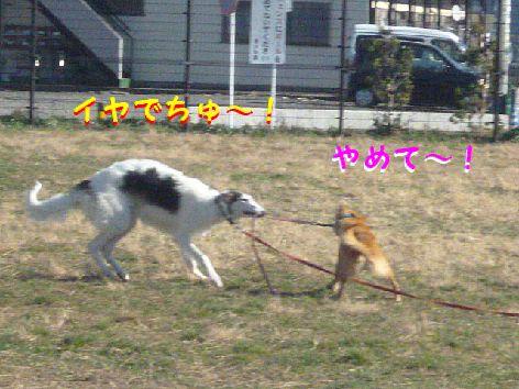e_20121216103913.jpg
