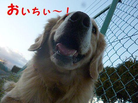 e_20130105112539.jpg