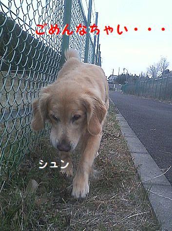 e_20130214075314.jpg