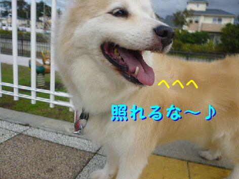 f_20120928074247.jpg