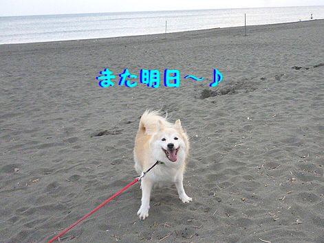 f_20121009073054.jpg
