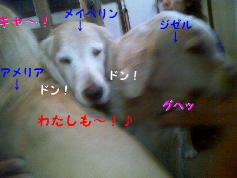 f_20130311085338.jpg