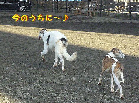i_20121210075137.jpg