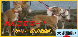 itabana2_20130118090920.png