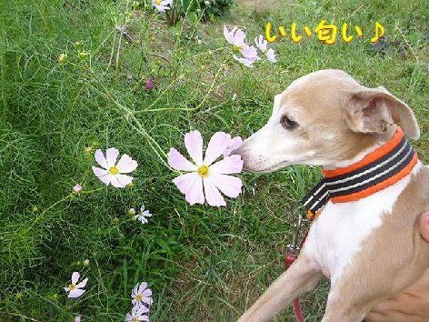 j_20120930080202.jpg