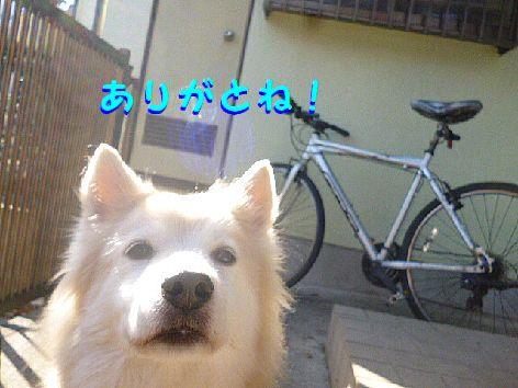 j_20130103112700.jpg