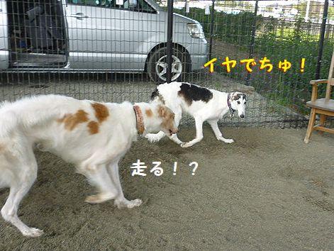 k_20120914081927.jpg