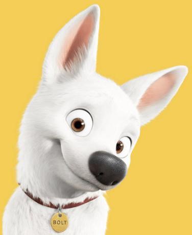 retyのマターリ犬バカな日々-ボルト