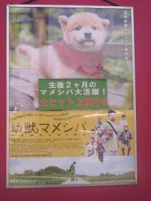 retyのマターリ犬バカな日々-ポスター