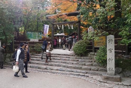retyのマターリ犬バカな日々-野宮神社