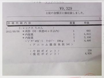 sDSCF0418.jpg