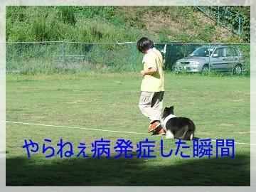 sDSCF0462_20121001133316.jpg