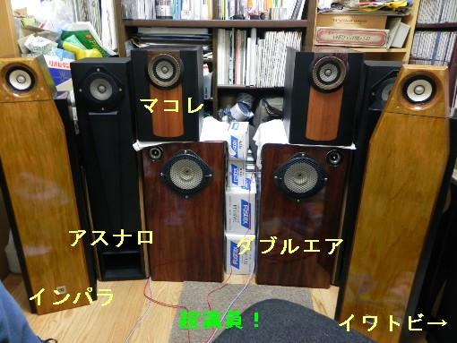 DSCN2247.jpg