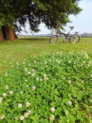 自転車25