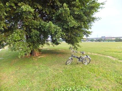 自転車23