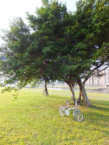 自転車12