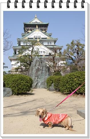 Osaka_castle.jpg