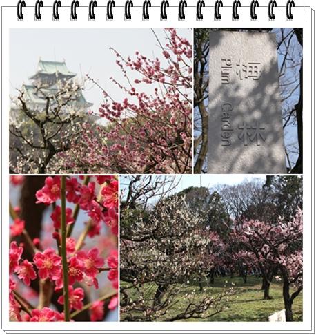 Osaka_castle_Plum_Garden.jpg