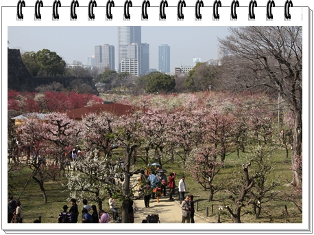 Osaka_castle_Plum_Garden_fukan.jpg