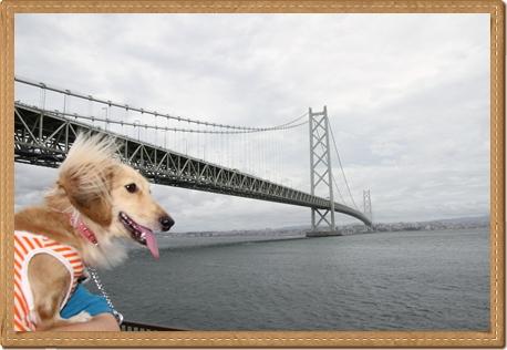 awaji_bridge.jpg