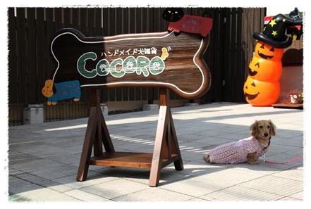 cocoro_signboard.jpg