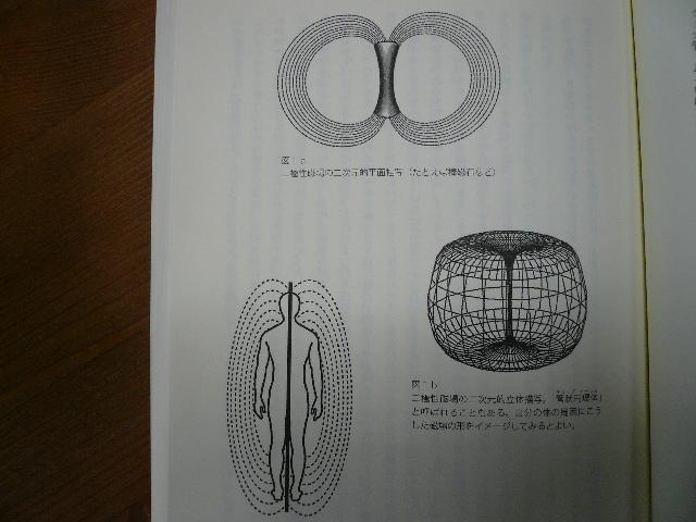P1060655.jpg