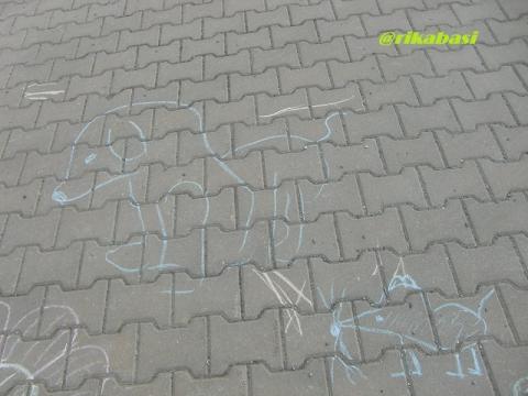 CIMG4519_20120522193636.jpg