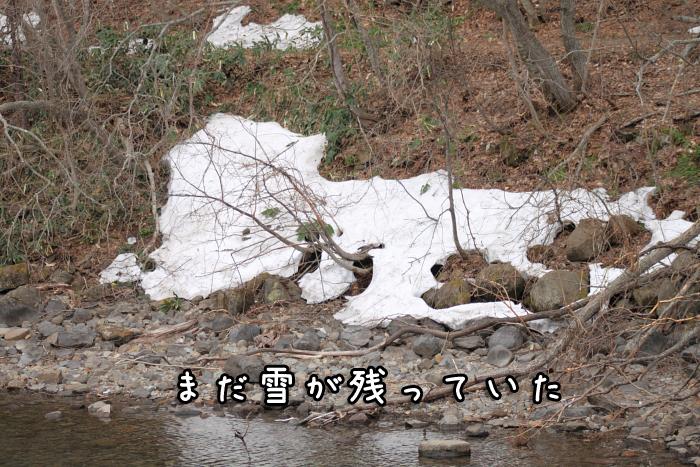 20120429-004.jpg