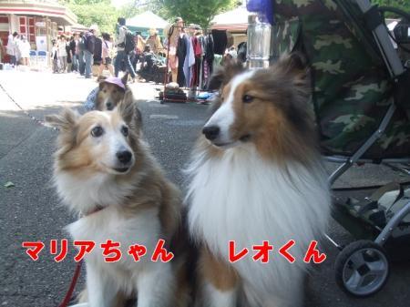 マリアちゃん&レオくん♪