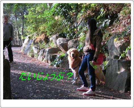 城山公園1