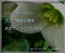 0206borooiwai2.jpg