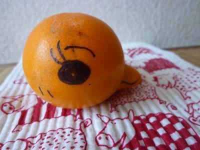 姫2号の柿