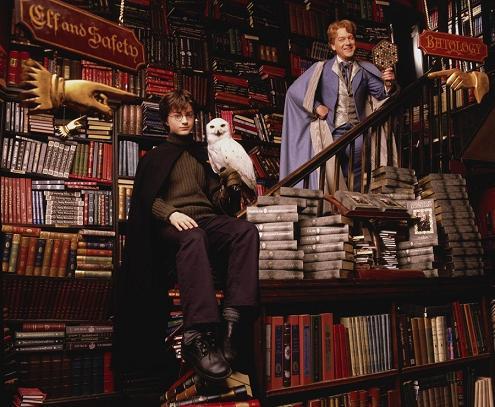 Gilderoy Lockhart and Harry Potter