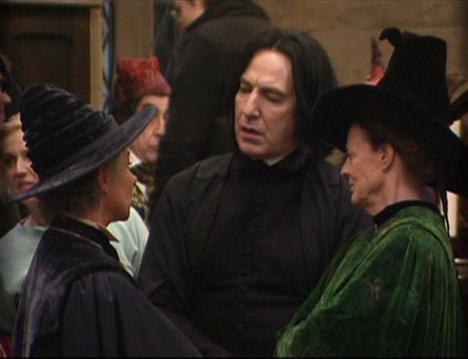 Madam rolanda Hooch,Gilderoy Lockhart,Minerva McGonagall