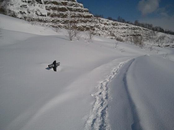 20121213.jpg