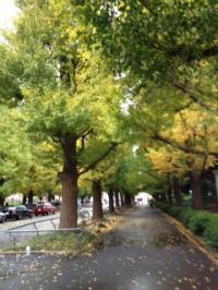 2012-11-17-2_convert_20121117225537.jpg