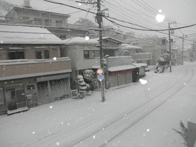 大雪横浜1